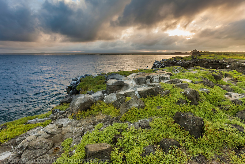 Sunset on South Plaza Island, Galapagos Islands, Ecuador