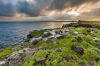 Sunset on South Plaza Island, Galapagos Islands, Ecuador