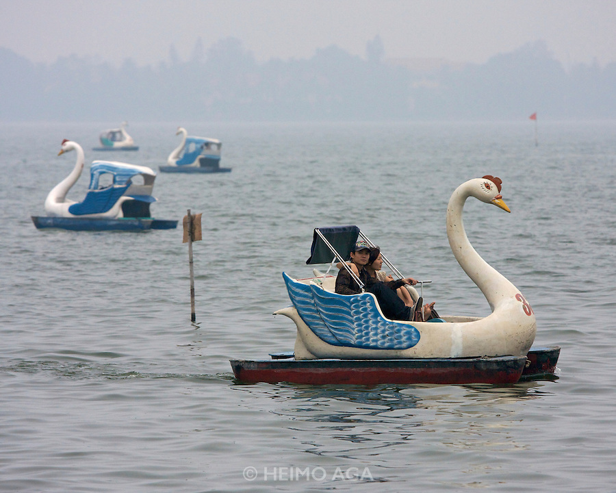 Ho tay (West Lake). Swan pedal boats.