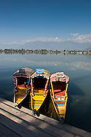 Lake Dal, Srinagar, Kashmir, Northern India, India