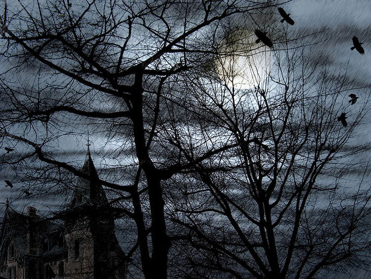 A night with large moon, church steeple, birds and trees with textured background