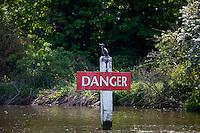 Cormorant bird on Danger sign on the River Thames in Berkshire, UK