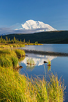 The summit of Mt. McKinley reflects in Wonder Lake, Denali National Park, Alaska.