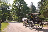 Horse-drawn wagons and carriages are popular on Mackinac Island in Michigan.