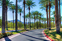 Palm Desert; Ca; Golf Course; Golf; Resort; Palm; Desert; Ca;