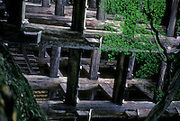 Kyoto: Todaiji Temple--buttresses.