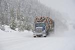 B.C., Cariboo - Winter