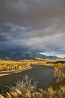 Paradise Valley, Yellowstone River, Absaroka Mountans,  Fall colors, golden, Cottonwood