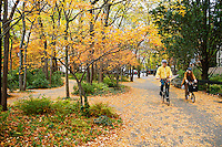 Autumn leaves cover the ground in Hudson River Park near Battery Park City in New York prior to the arrival of Hurricane Sandy, seen on Sunday, October 28, 2012. Battery Park City was in the Zone A evacuation area and was inundated with water. (© Richard B. Levine)
