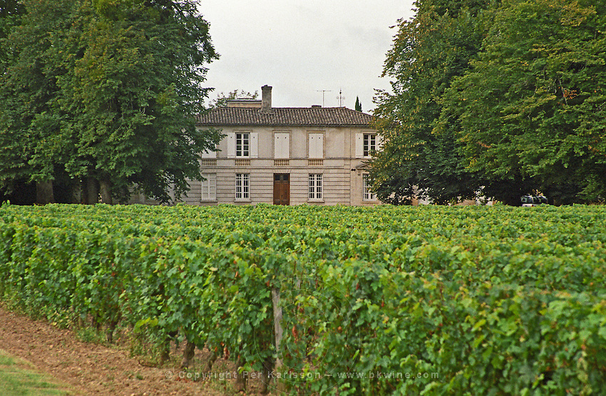 Vineyard. Chateau Rahoul, Graves, Bordeaux France