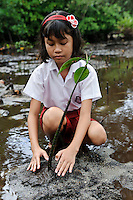 A young girl planting a mangrove seedling during an environmental education class, Dudepo, Bolmong Selatan, Sulawesi, Indonesia.