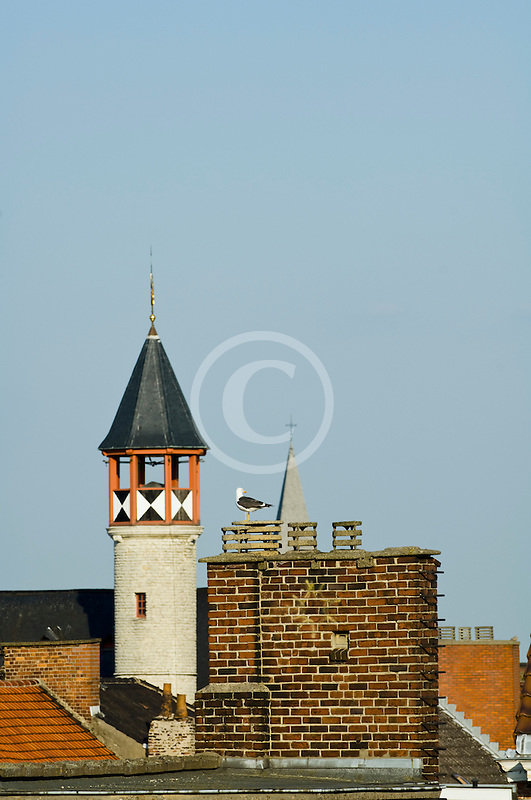 Belgium, Ghent, Red-tiled roofs