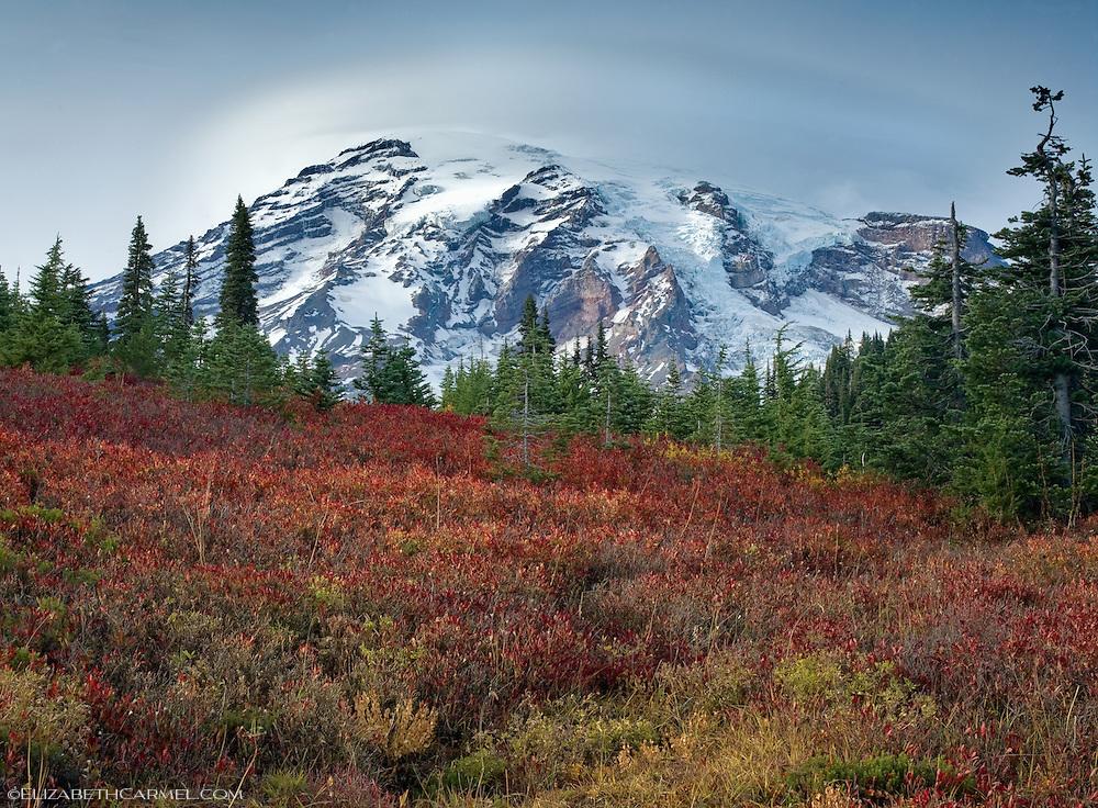 Mount Ranier in Autumn