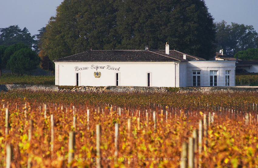 Vineyard and winery. Chateau Beau Sejour Becot. Saint Emilion, Bordeaux, France
