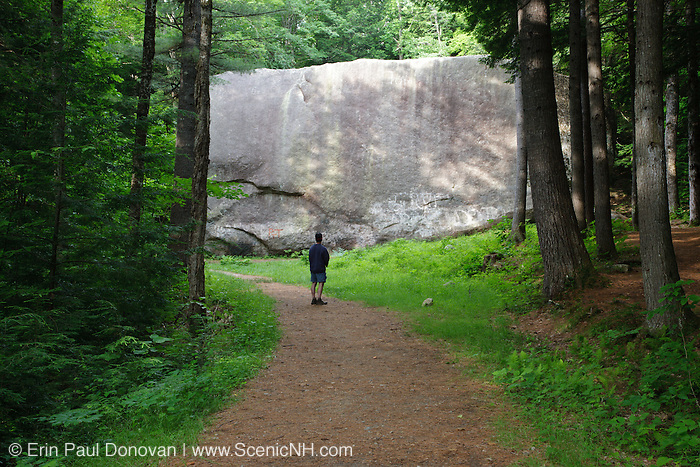 Madison Boulder Natural Area in Madison, New Hampshire. Madison Boulder is one of the largest glacial erratics in the world. 87 feet long, 23 feet wide and 37 feet high.