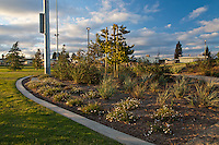 A view of the foremost area of the butterfly garden at Stanton Central Park, showing the border between the grass fields and the more diverse butterfly garden plantings.  A partly cloudy blue sky is visible.