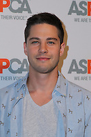 BEL AIR, CA - OCTOBER 20: Dean Geyer attends ASPCA's Los Angeles Benefit on October 20, 2016 in Bel Air, California.  (Credit: Parisa Afsahi/MediaPunch).