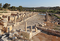 Main street, connecting the inner harbour to the agora in front of the bouleuterion, Hellenistic period, Patara, Antalya, Turkey. This is a Cardo (North-South street) which intersects with the Decumanus (East-West street). It is 12.6m wide and has a colonnade of granite Ionic columns on its East side and one of marble columns on the West, behind which we can see shops of varying sizes, here on the left. This colonnaded wide avenue was completely flooded after the earthquakes in the region, and so far, it has been unearthed over 100m. The lack of wheel marks suggests that it functioned as a pedestrian street. There is a sewer system running underneath the street. Patara was a maritime Greek and Roman city on the South West Mediterranean coast of Lycia near modern-day Gelemis. It was said to be founded by Patarus, son of Apollo, and was famous for its temple and oracle of Apollo. It was a leading city of the Lycian League. Picture by Manuel Cohen