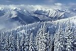 Snow on Hurricane Ridge, Olympic National Park, Washington