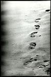 Footprints in a sandy beach