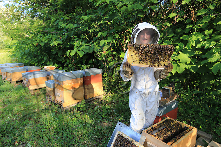 Stephanie Rack, 28 years old, Th&ocirc;nes Th&ocirc;nes in Haute-Savoie, producer of organic royal jelly,inspecting the hives. The bees' work is different for the production of royal jelly. Stephanie likes the manual work and being able to work outdoors.///St&eacute;phanie Rack, 28 ans, Th&ocirc;nes en Haute-Savoie, Productrice de gel&eacute;e royale Bio.<br /> Inspection des ruches par Stephanie. Le travail des abeilles est diff&eacute;rent pour la production de gel&eacute;e. Stephanie appr&eacute;cie le travail manuel et travailler en ext&eacute;rieur.