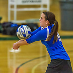1 November 2015: Yeshiva University Maccabee Libero and Defensive Specialist Dalia Sieger, a Sophomore from Los Angeles, CA, bumps one against the SUNY College at Old Westbury Panthers at SUNY Old Westbury in Old Westbury, NY. The Panthers edged out the Maccabees 3-2 in NCAA women's volleyball, Skyline Conference play. Mandatory Credit: Ed Wolfstein Photo *** RAW (NEF) Image File Available ***