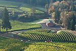 Alexana Vineyards, Dundee Hills, Willamette Valley, Oregon