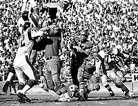 San Francisco 49er John Brodie under rush from Los Angeles Ram #72, getting blocked by #66 Elmer Collett. (1969 photo/Ron Riesterer)