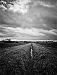 Drainage Ditch, Occold, Suffolk, 2009