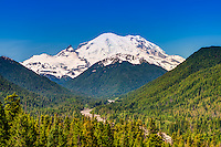 A view of the summit of Mount Rainier with Goat Island Mountain in the foreground, flanked by Tamanos Mountain on the left and Burroughs  Mountain on the right, with the White River meandering through the valley on its way down to the Puget Sound.