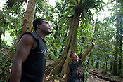 Patrick Kaupun, and a young boy, discuss trees in the bush near Bain village in the Cape Orford logging concession (run by Rimbunan Hijau- Malaysian logging giants), in Bain, East New Britain Island, Papua New Guinea,  Friday 19th September 2008.