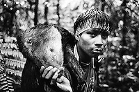 The Hunt: Contemperary Amazonian Hunter Gatherers
