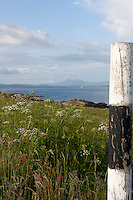 With distant mountains on the horizon the Island of Islay in the summer is a mass of wild flowers
