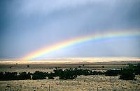RAINBOW<br /> Grants, New Mexico
