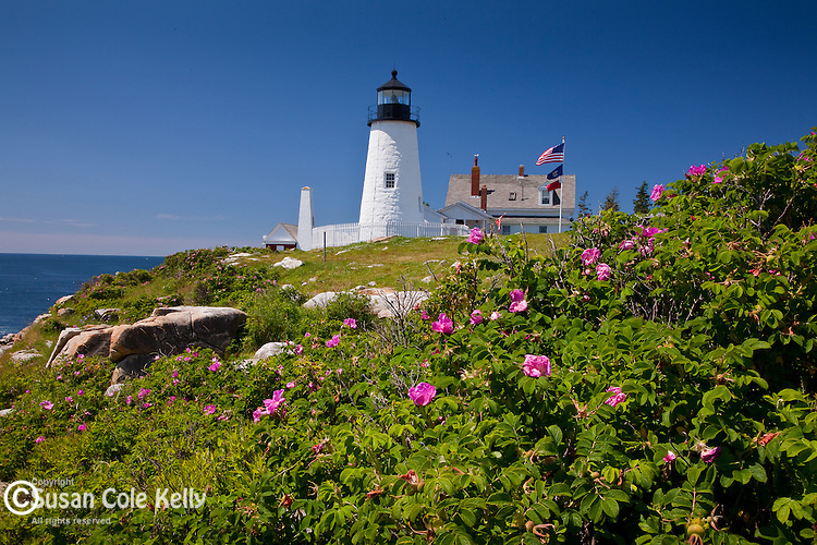Pemaquid Point Lighthouse in Bristol, ME, USA