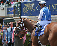 HALLANDALE BEACH, FL - APRIL 01:  #3 All Included with jockey Javier Castellano in the winners circle after winning the Appleton Stakes. Scenes from  Florida Derby Day at Gulfstream Park on April 01, 2017 in Hallandale Beach, Florida. (Photo by Liz Lamont/Eclipse Sportswire/Getty Images)