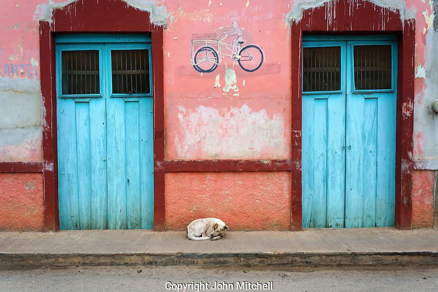 Stray dog sleeping in the sidewalk in Santa Elena, Yucatan, Mexico.