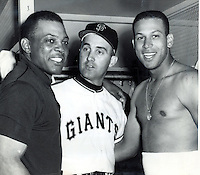San Francisco Giants Willie Mays, Billie Pierce, and Orlando Cepeda 1962 photo..Ron Riesterer/photo
