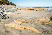 Rocky beach with limestone formations at Paturau on west coast of South Island, Nelson Region, New Zealand