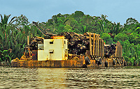 Barge loaded with tropical hardwood logs, moored on the banks of a river in Sarawak.  Borneo, Malaysia.