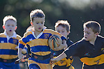 110507 Patumahoe Junior Rippa rugby