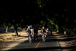 Cyclists ride the American River Bike Trail in Sacramento, California.
