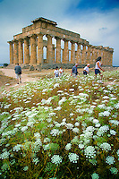 Selinunte, Sicily, Italy, May 2007. The Arcropolis of ancient Greek Selinunte.  The rugged nature of sicily harbours beautiful villages and ruins of ancient civilizations. Photo by Frits Meyst/Adventure4ever.com