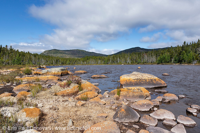 Shoal Pond in the Pemigewasset Wilderness of the New Hampshire White Mountains during the summer months.
