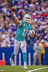 14 September 2014: Miami Dolphins quarterback Ryan Tannehill looks for a receiver during play against the Buffalo Bills at Ralph Wilson Stadium in Orchard Park, NY. The Bills defeated the Dolphins 29-10 to win their home opener and start the season with a 2-0 record. Mandatory Credit: Ed Wolfstein Photo *** RAW (NEF) Image File Available ***