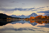 Sunrise at Oxbow Bend at the peak of Autumn colors in Grand Teton National Park. The Oxbow Bend of the Snake River provides a great reflecting pool for the red and yellow aspens.