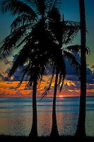Sunset with a silhouette of palm trees, Amuri Beach, Aitutaki Island, Cook Islands