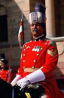 Presidential guard at Rasthraparti Bhavan, Delhi, India