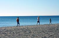 Illinois Beach Sunny