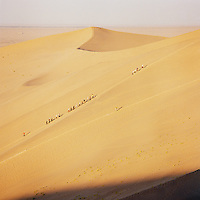 Tourists climb the steep sand dunes, Silk Route; Dunhuang, Jiuquan, Gansu Province, China.